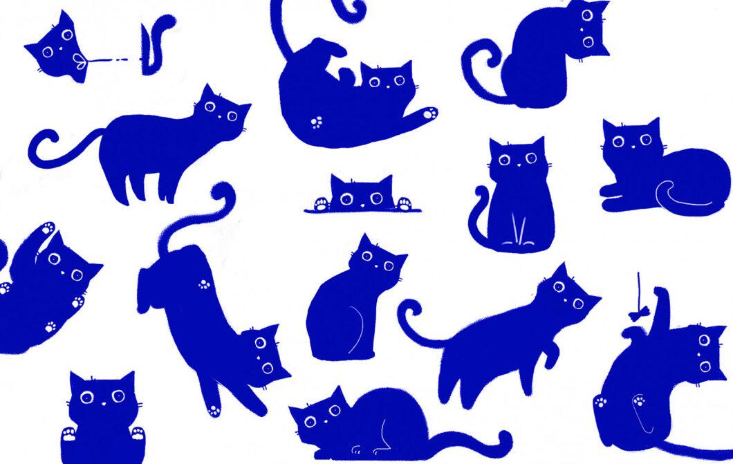 Illustrazioni Gatti blu Vera Zvereva per Milgrad